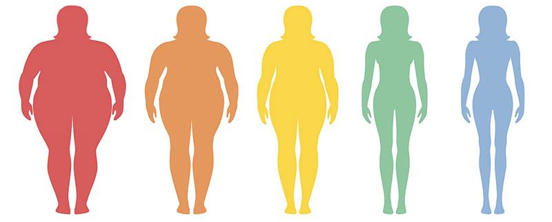 porcentaje de grasa corporal por nutricienta