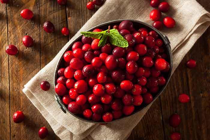informacion nutricional sobre el arandano rojo