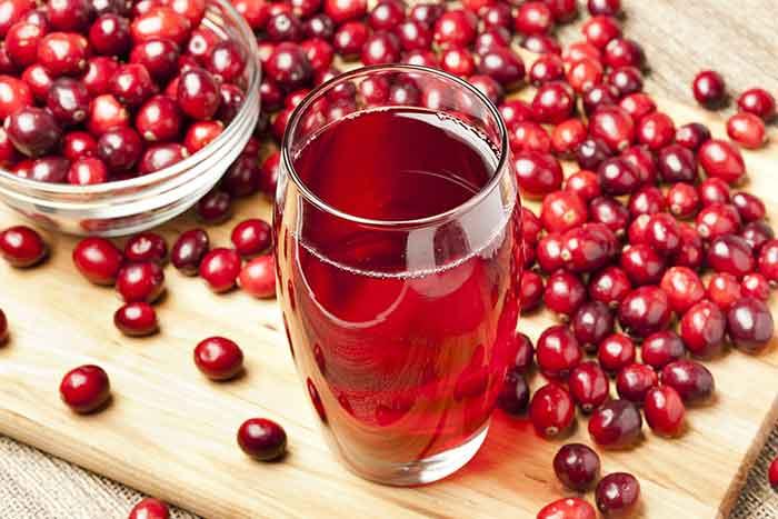 informacion nutricional del zumo de arandano rojo
