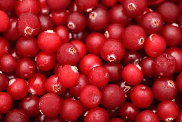 propiedades del arandano rojo