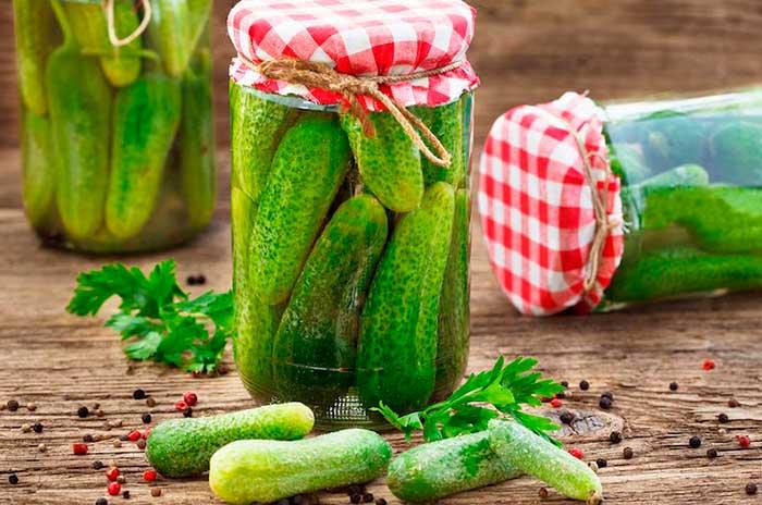 propiedades nutricionales de los pepinillos encurtidos por nutricienta