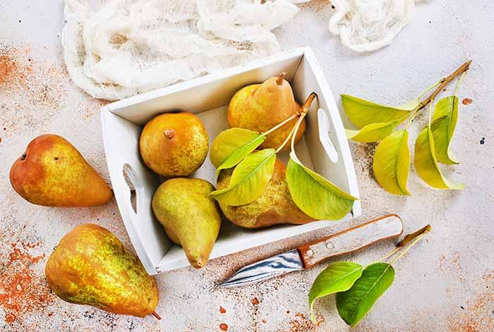 tipos y variedades de peras