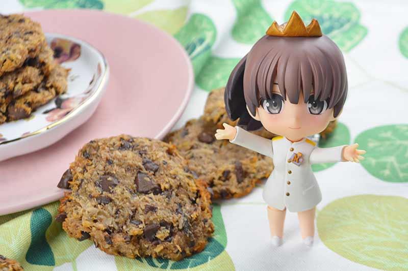 galletas de coco y chocolate sin harina, sin huevos, sin azucar, sin leche 2